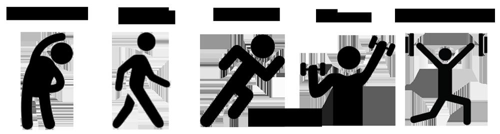 The Movement Spectrum(TM): Movement, Activity, Exercise, Fitness, Performance
